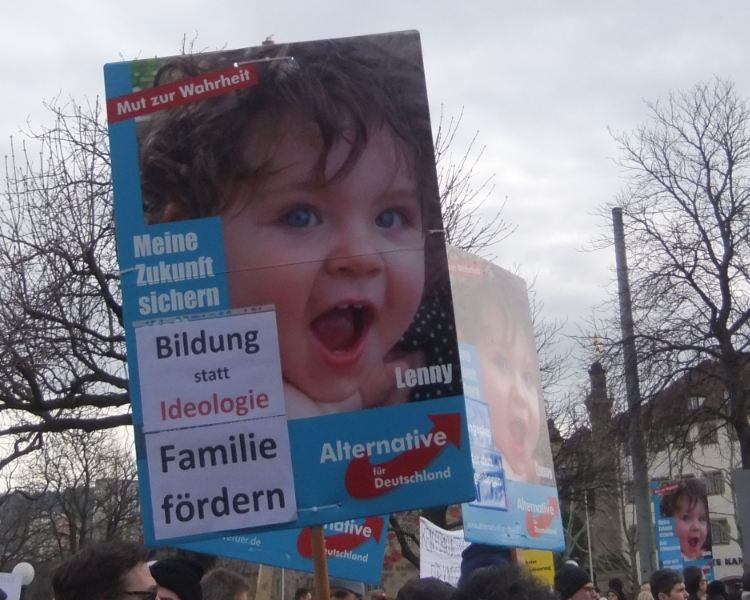 AfD auf homo-6transphober Demo in Stuttgart, 01.02.14