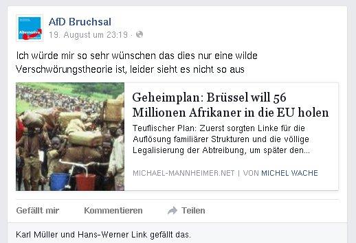 AfD Bruchsal rassistische Verschwörung