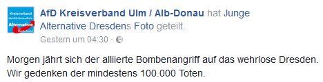 AfD Ulm geschichtsrevisionistisch