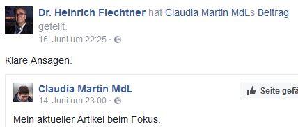 Fiechtner liked Martin