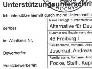 Focke, Kandidatin