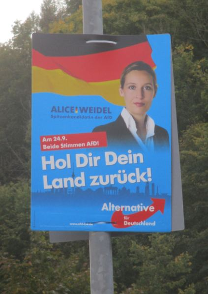 Weide-Plakat