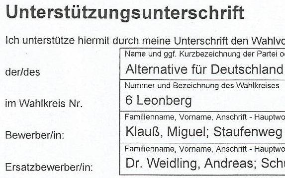 Weidinger als AfD-Ersatzkandidat